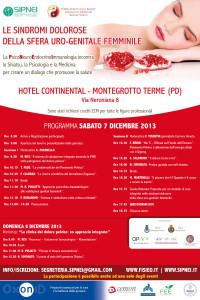 Locandina 2013